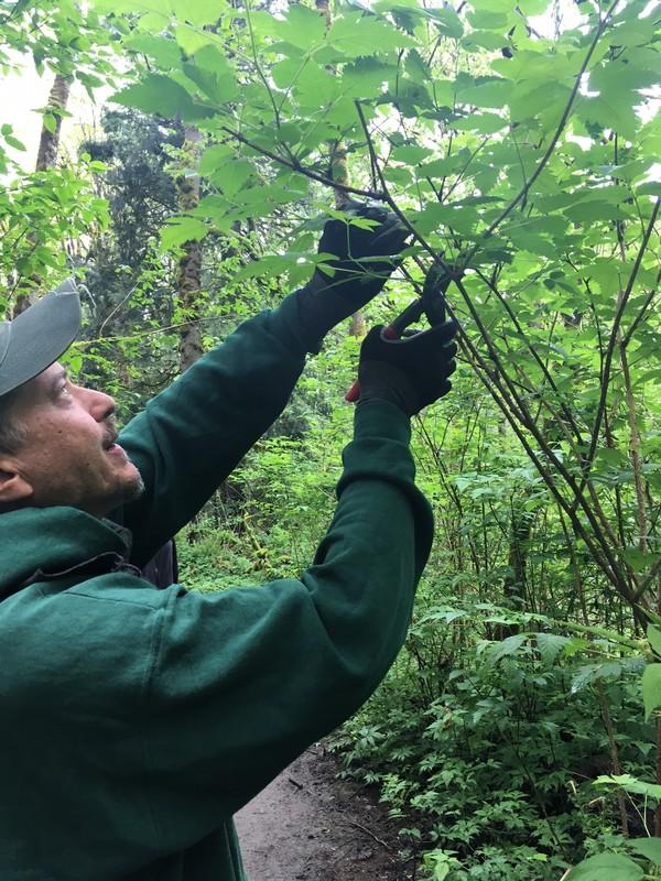 tryon-creek-volunteer-trail-improvement.jpg