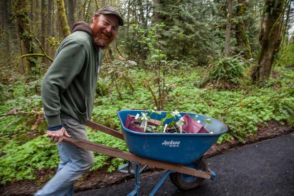 tryon-creek-volunteer-trillium-wheelbarrow.jpg