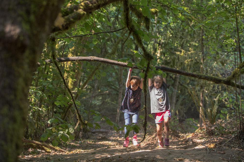 nature-day-camp-friendship-tryon-creek.jpg
