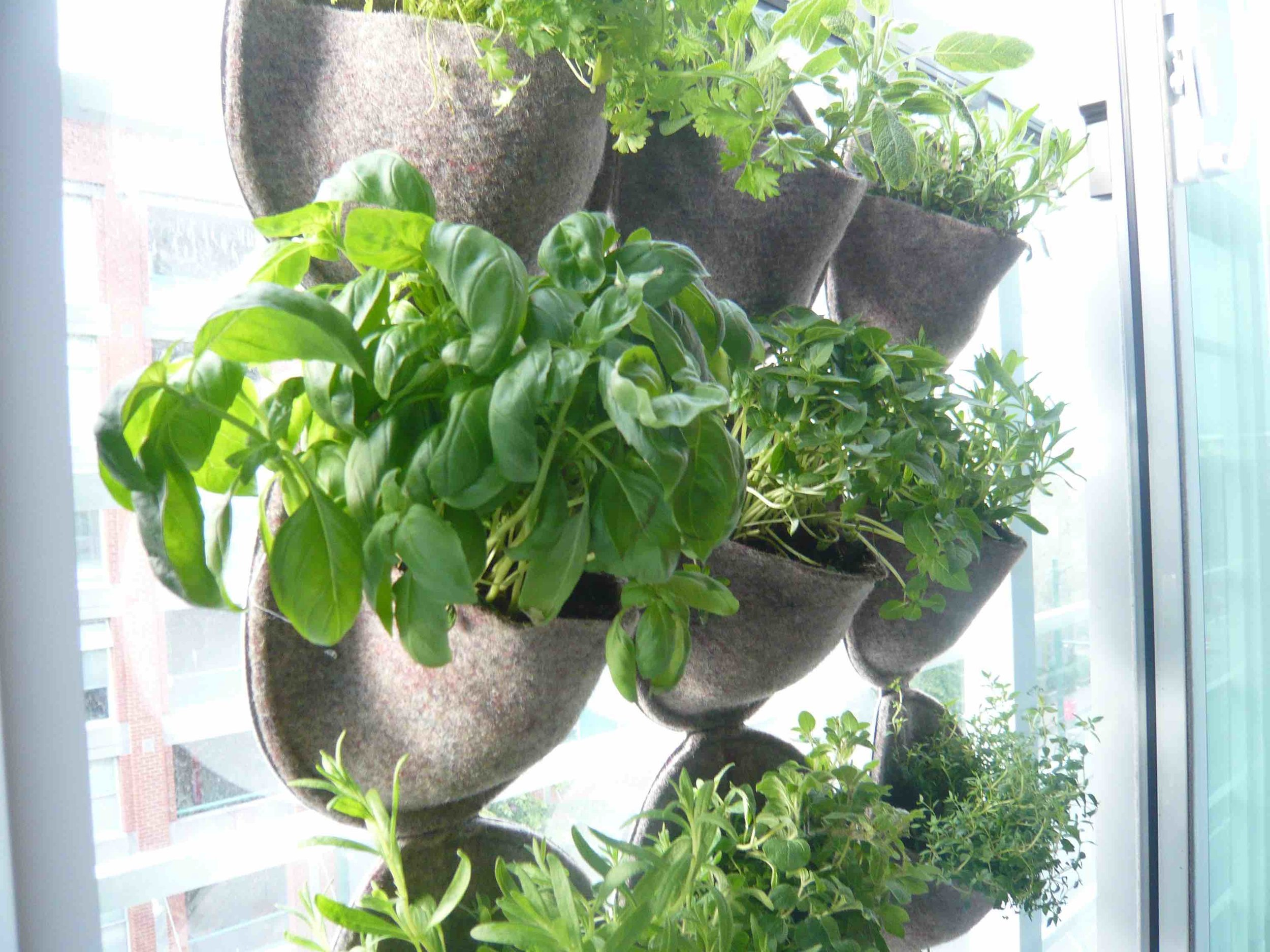 Herban planter for balconies and other small spaces.