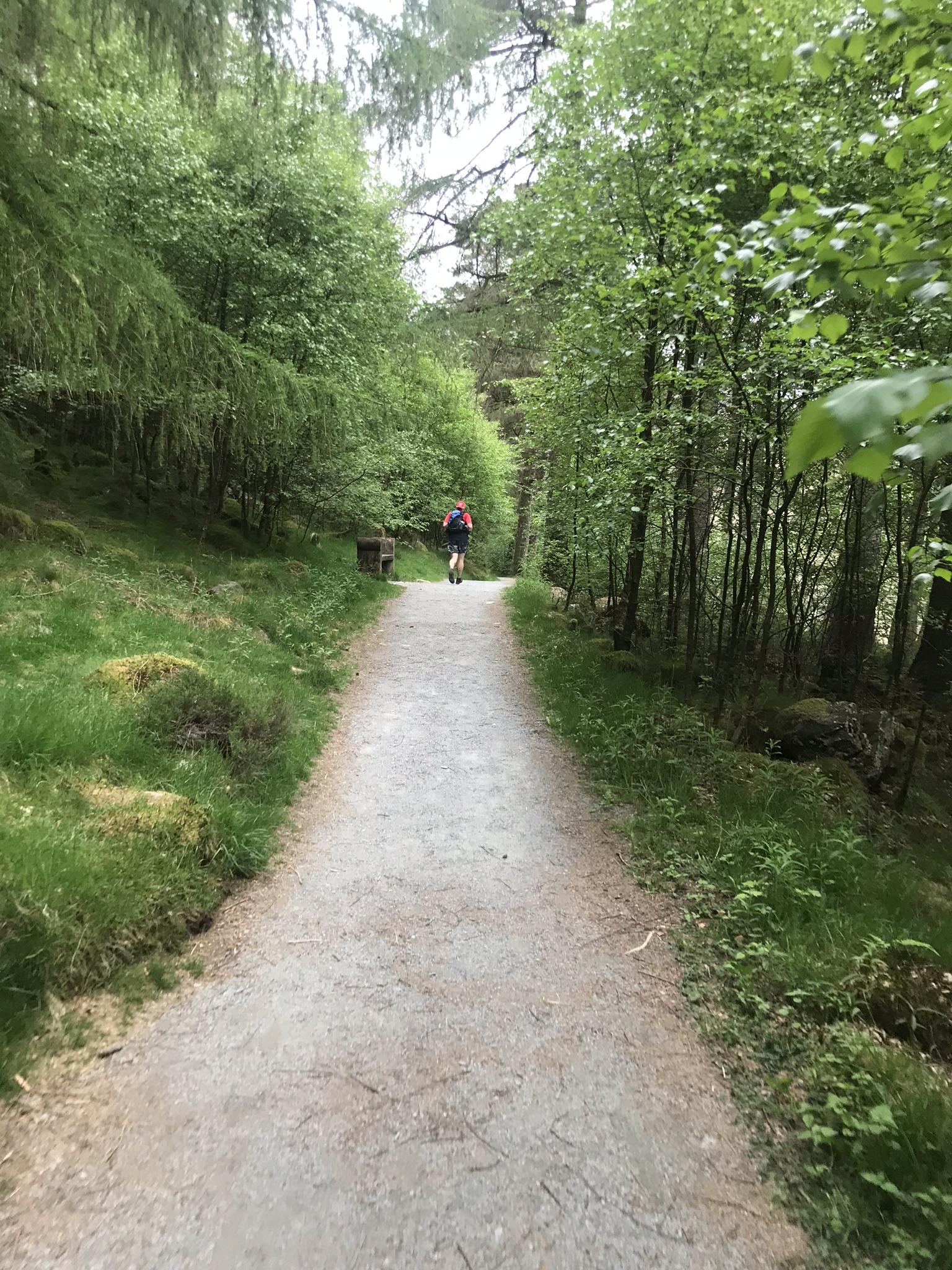 Blea Tarn bridleway.