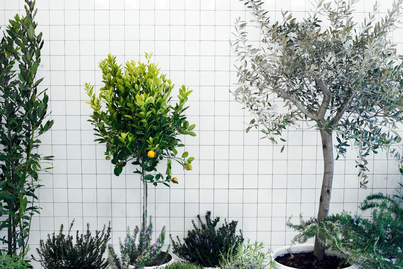 Elisa Ossino Studio — Meson's — Eurocucina 2010