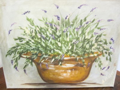 Lavender-in-pot.jpg