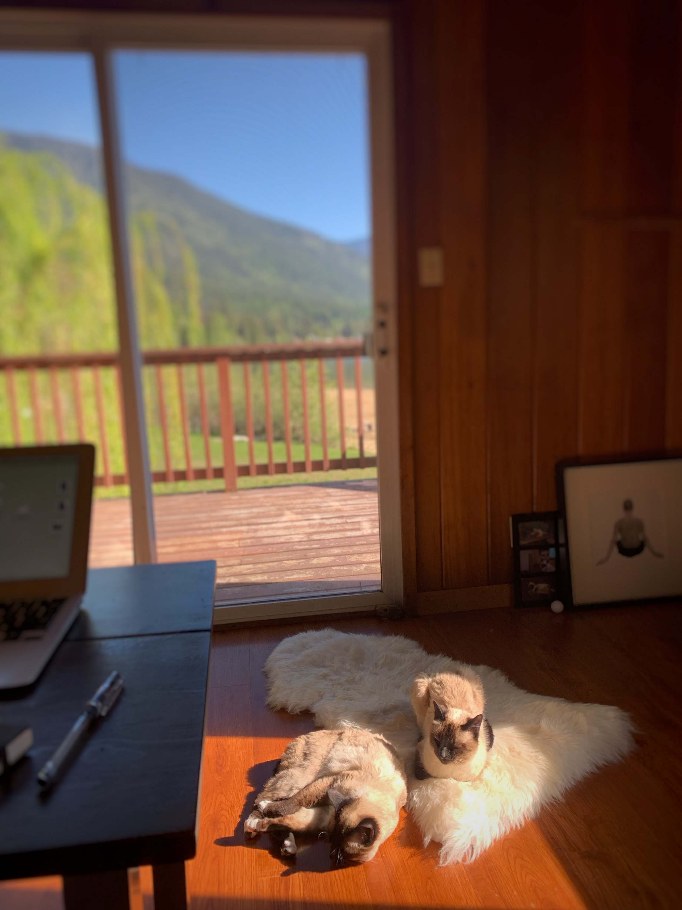 When all is right with the world, cabin life, Nelson, BC