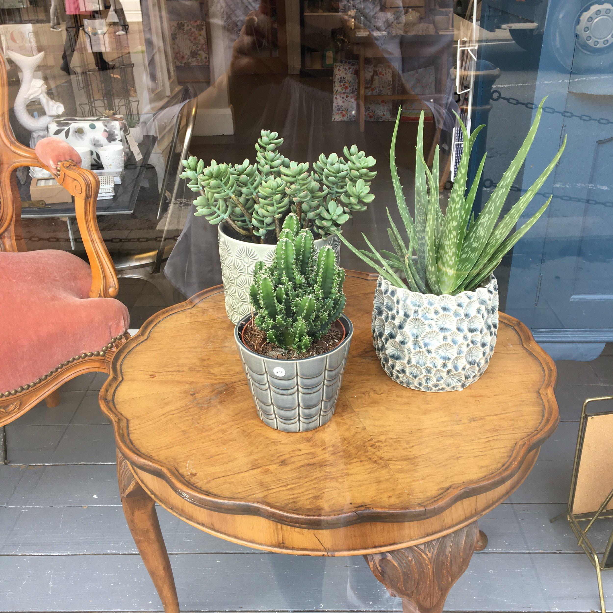 ceramic plant pot covers
