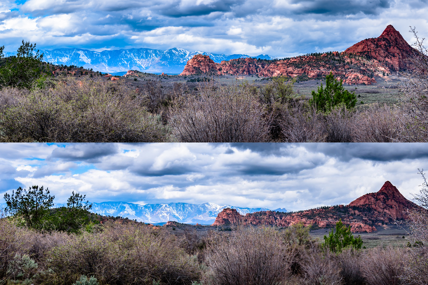 Red Butte - Panorama vs Wide Angle - This is from my trip to Utah last March. We drove into the northern part of Zion National Park and took a short walk down the Hop Valley Trail. The light was coming through the clouds and started hitting Black Ridge in the background when we weren't far down the trail.
