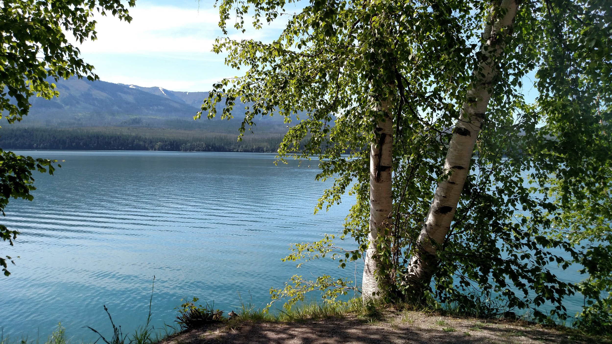 This is another view of Lake McDonald, the color of the water was so cool and the front facing camera on my phone that I take all of these wonderful selfies with doesn't do great with colors, so this is still a cell phone picture but at least you can see the colors that I saw.