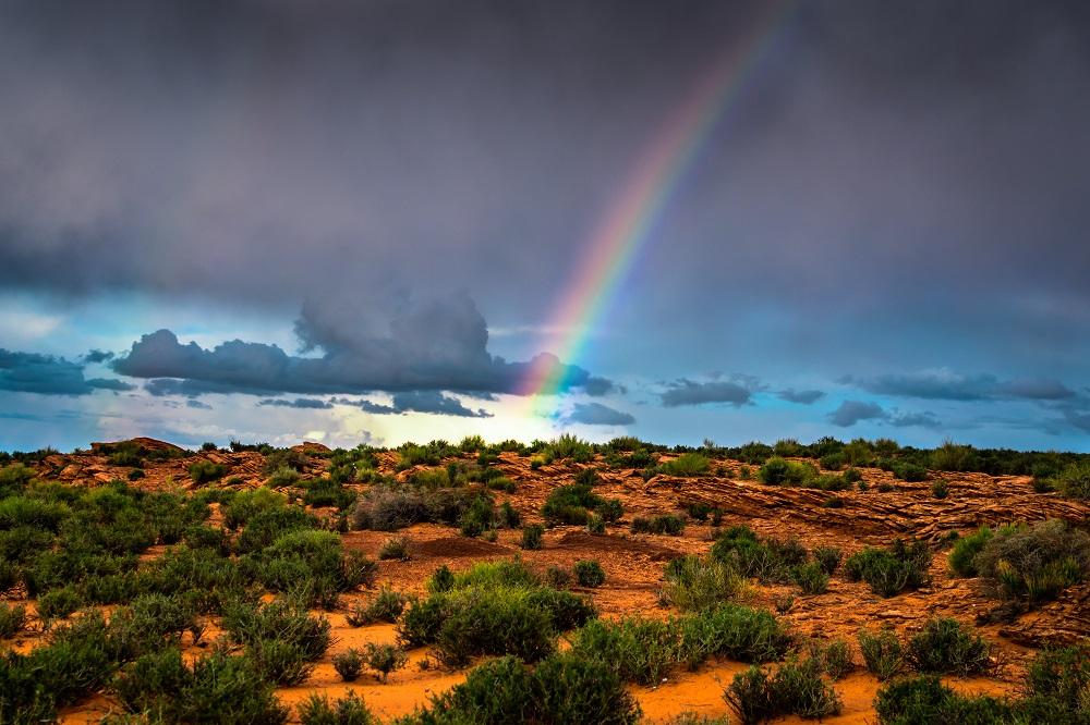 """""""Arizona Rain"""" - Arizona"""