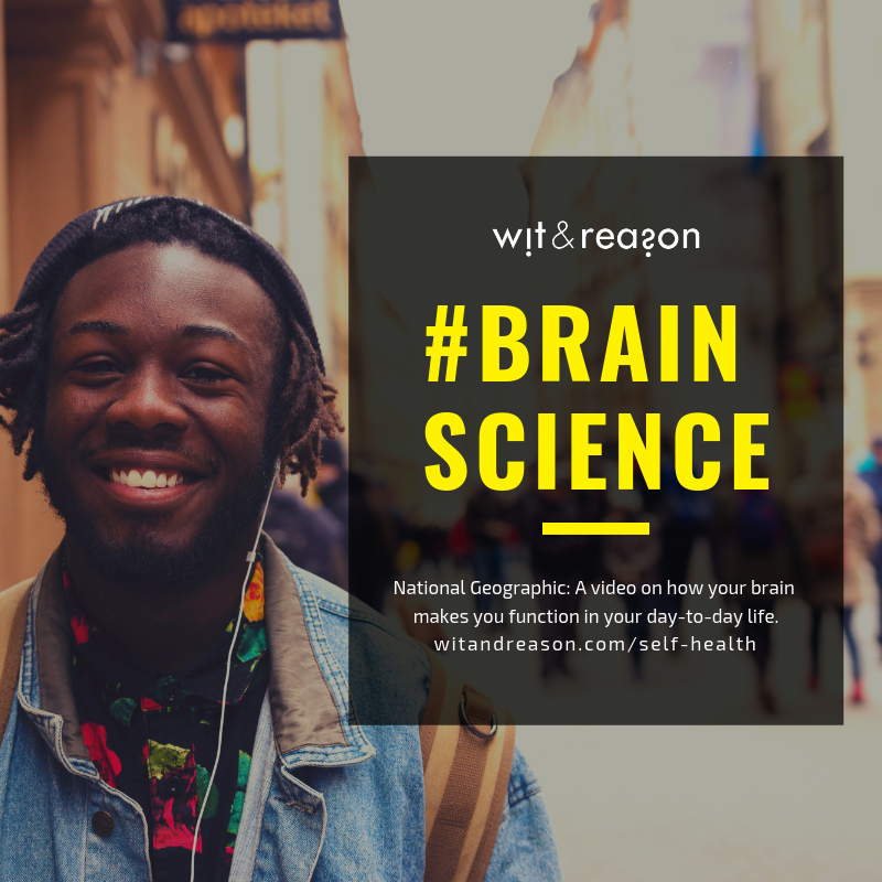 Brain 101  National Geographic  [VIDEO] How your brain works and makes you function in your day-to-day life.
