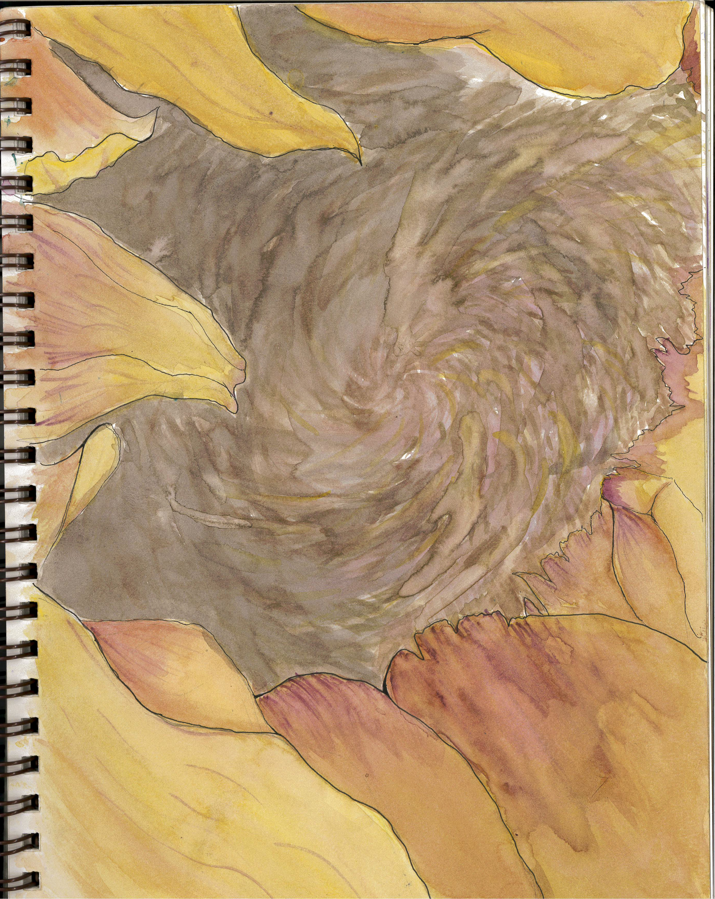 sunflower 3.