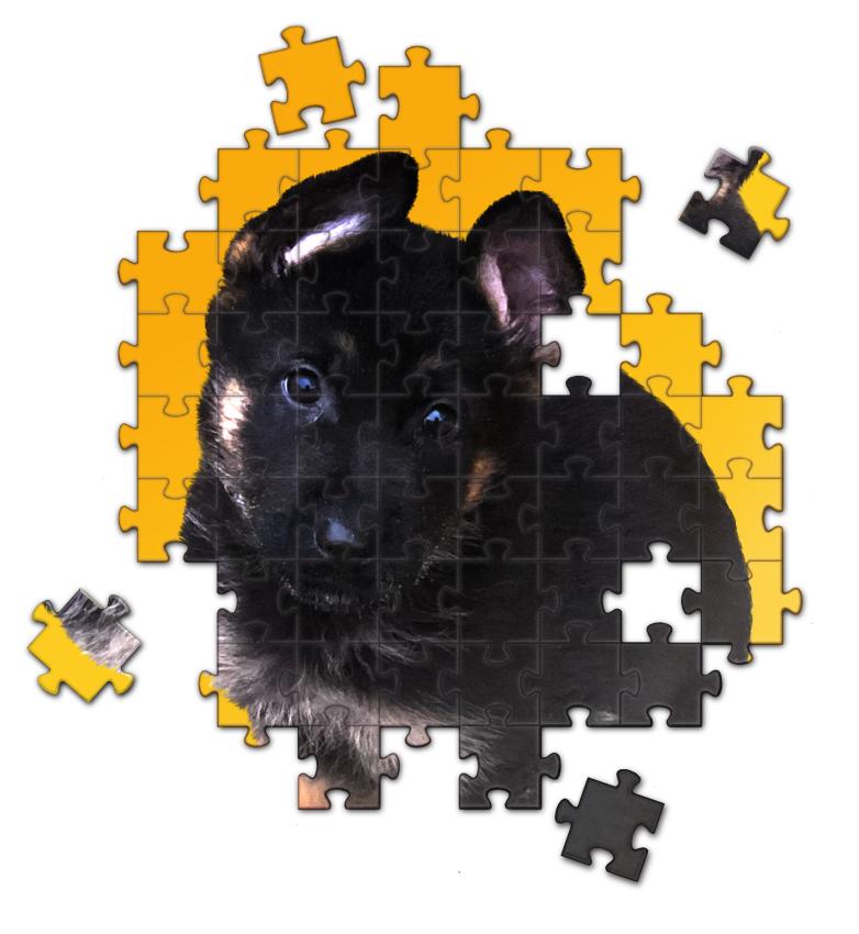 pupPuzzlewip3.png