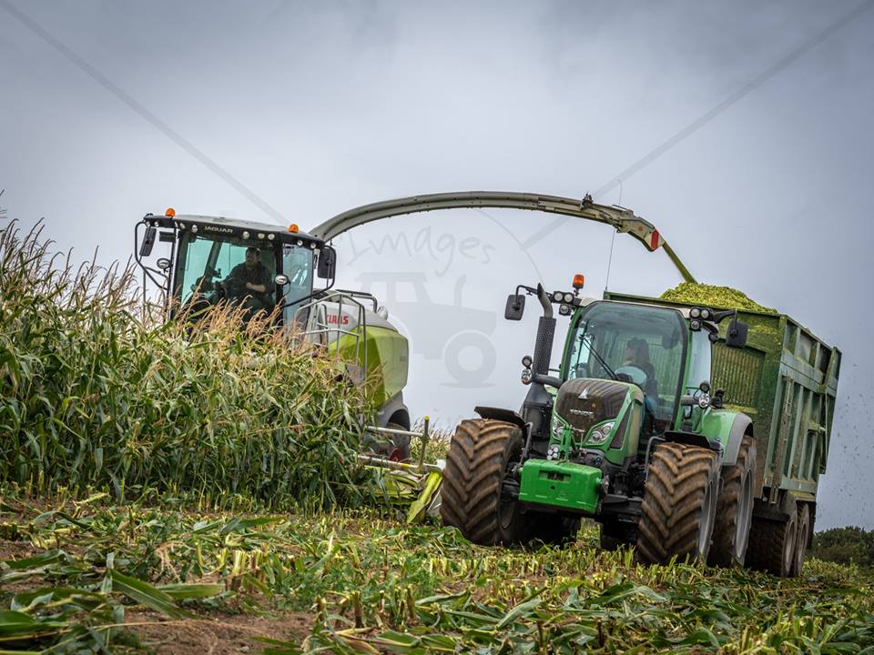 maize-silage-lesley-brown-contractors.jpg