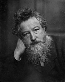 William Morris in his 50s.