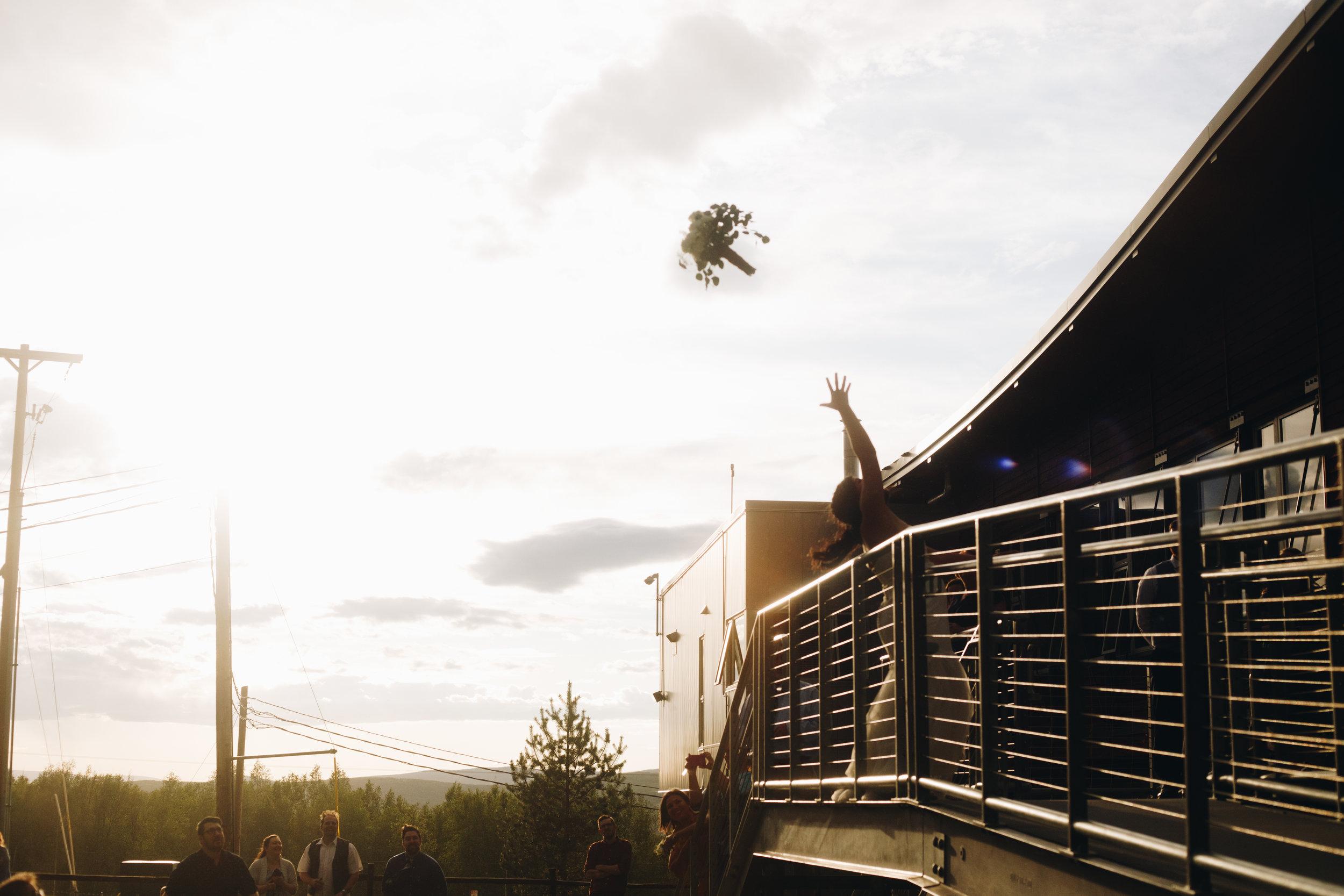 norris teaser-107.jpg