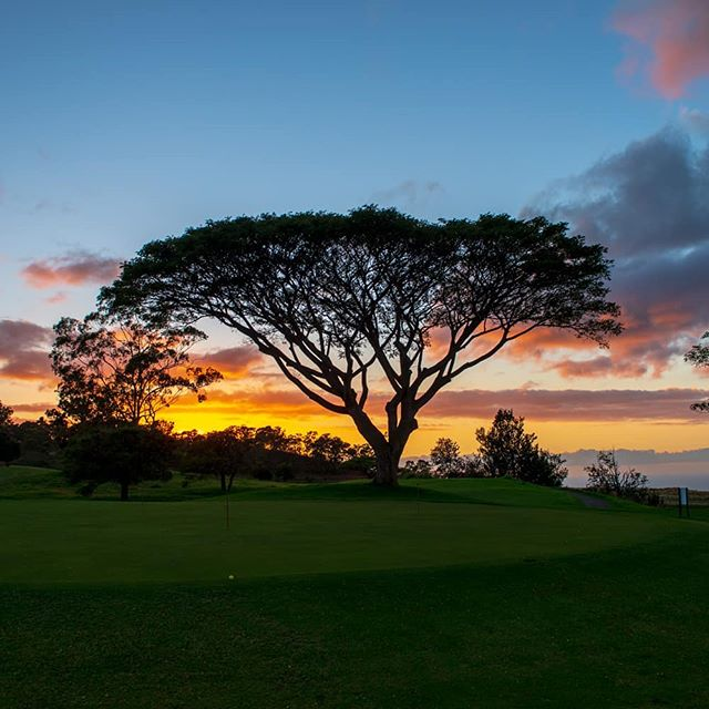It's hard to focus on the putt with views like this! #makanigolfclub #beautifulgolfcourses #golfhawaii #hawaiigolf