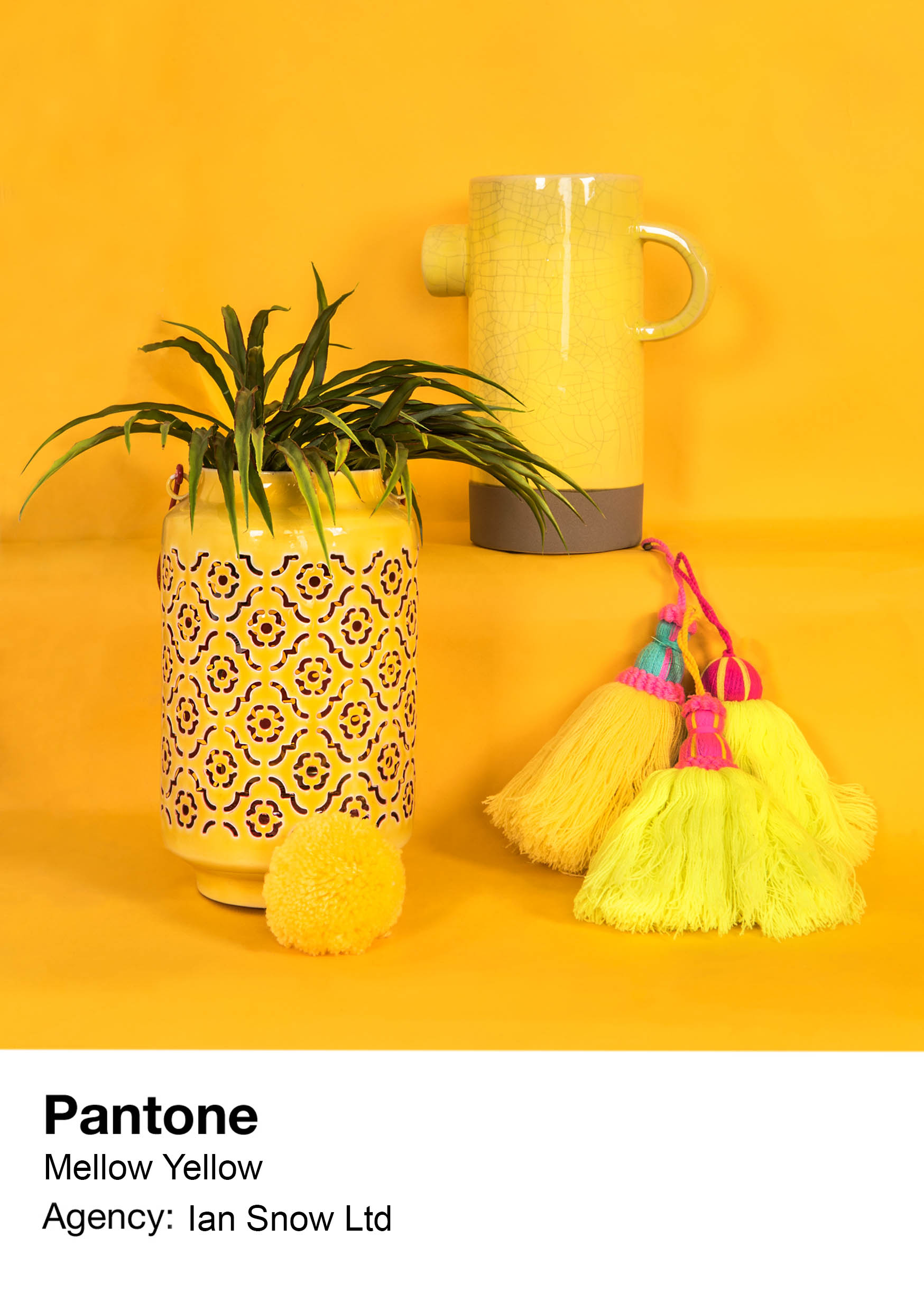 Mellow Yellow Homepage Campaign for Ian Snow Ltd