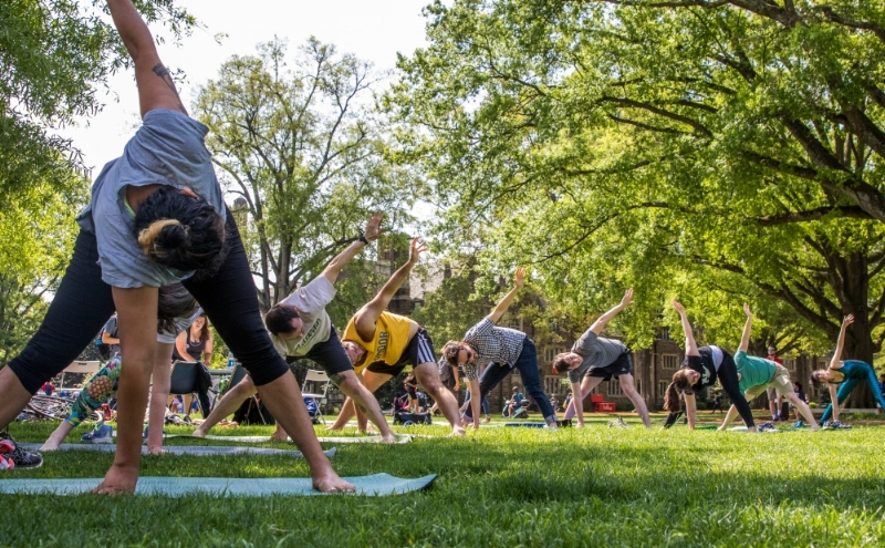 "Duke Graduate Students hold a triangle pose during the ""Exercise Your Rights"" action in Spring 2017"