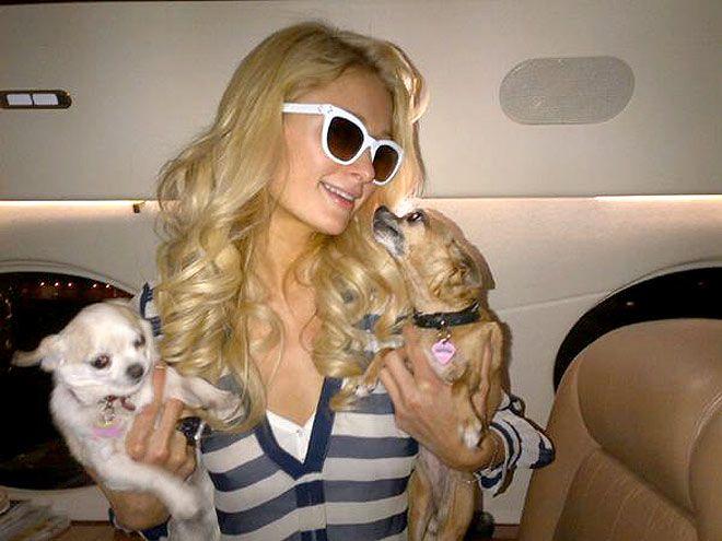 PHOTO: Paris Hilton