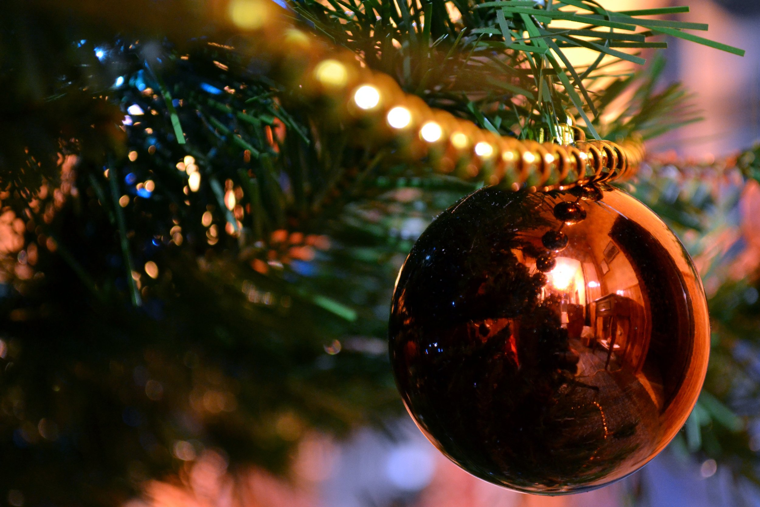 tree-branch-decoration-macro-holiday-christmas-732775-pxhere.com.jpg