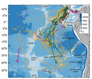 Satellite transmission positions for 46 leatherback turtles from 2004 (orange), 2005 (purple), and 2007 (green), tagged at Playa Grande, Costa Rica.