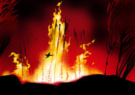 hummingbird-and-forest-fire2.png