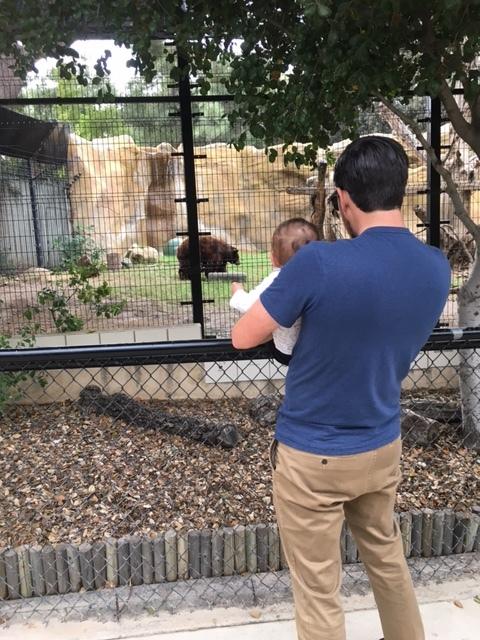oc zoo baby outings.JPG