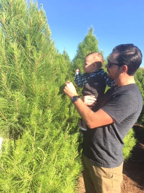 christmas tree shopping with baby and family.JPG