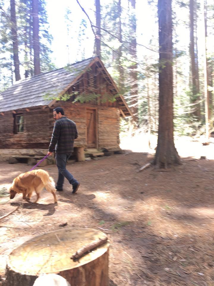 Big Ed Tree Trail