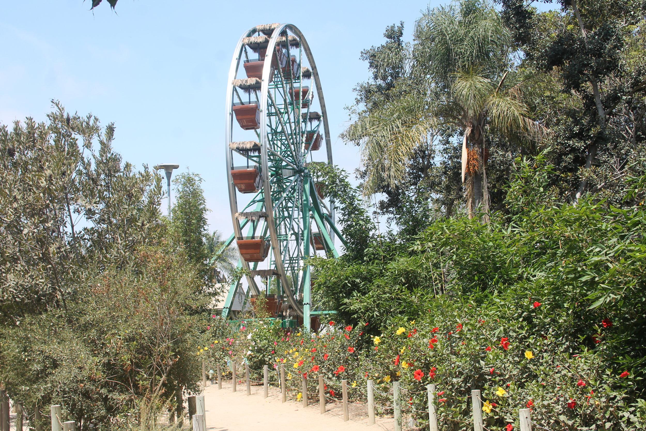 Santa Ana Zoo Ferris Wheel.JPG
