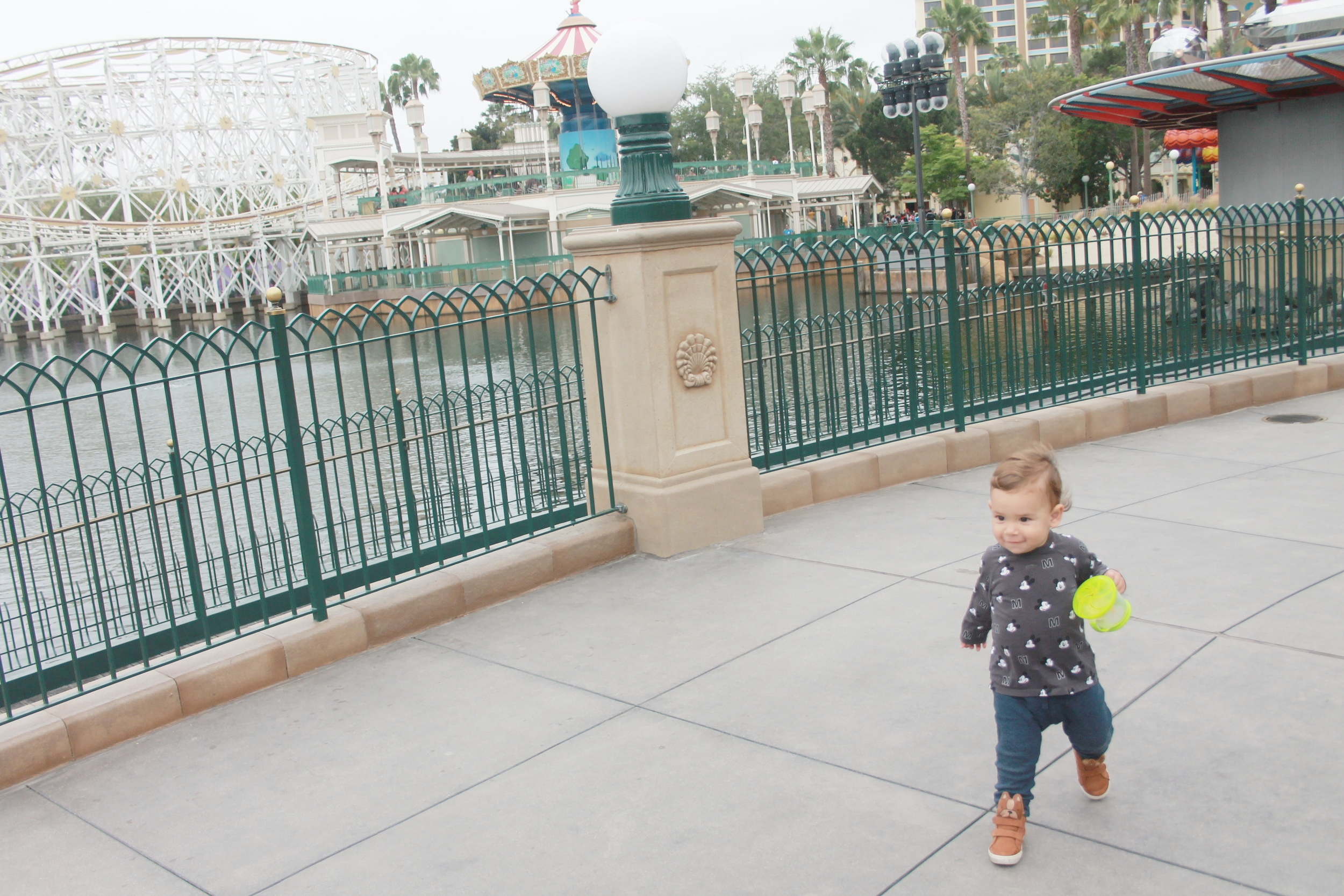 California Adventure With toddler.JPG