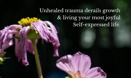 Wilted flowers - Unhealed trauma derails living your most joyful life  wisdom quotes 500 x 300 px--min.png