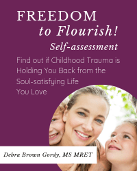 Freedom to Flourish self-assessment Cover 2 b 200 x250-min.png