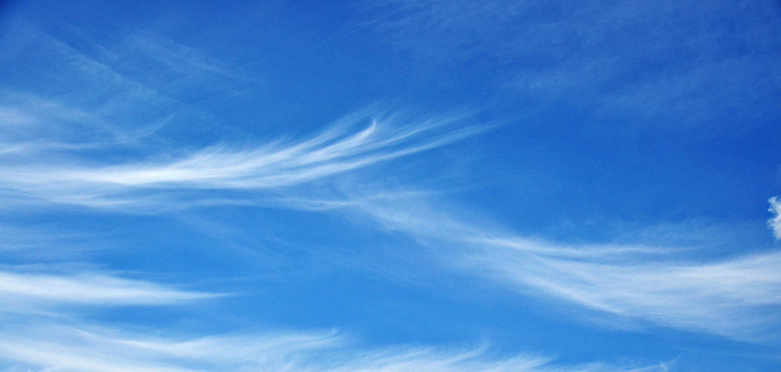 BLUE SKY CROP.jpg
