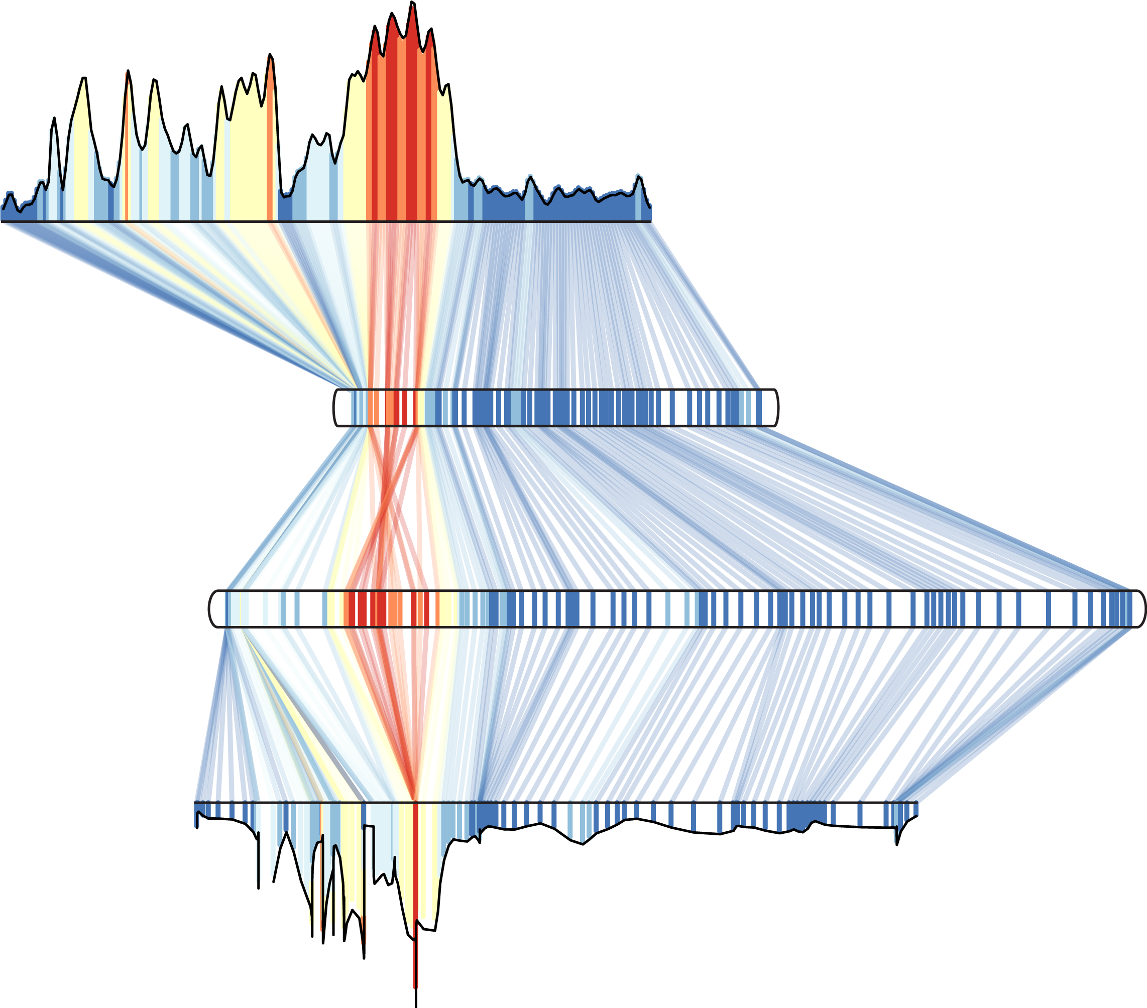 An genome scan of genetic differentiation (FST) shows different architectures depending on the map used. Top is the physical map (measured in base pairs). The Y axis and coloration depict FST. The next three rows are genetic maps (measured in genetic distance) from individuals homozygous or heterozygous for a chromosomal inversion.