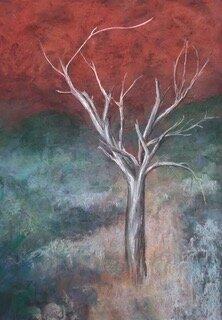 Mark Herron Olga Tree