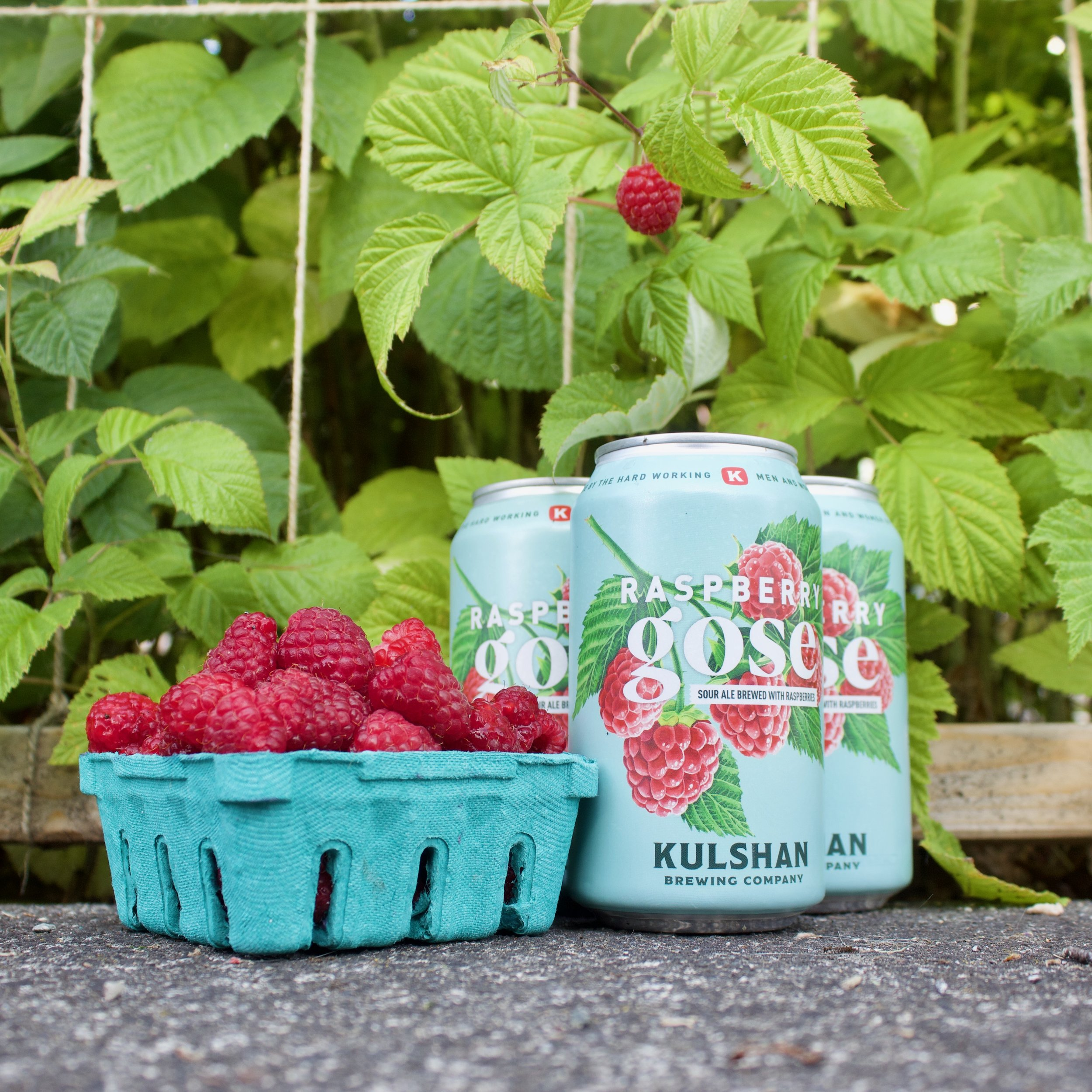 Raspberry Gose from Kulshan Brewing Company