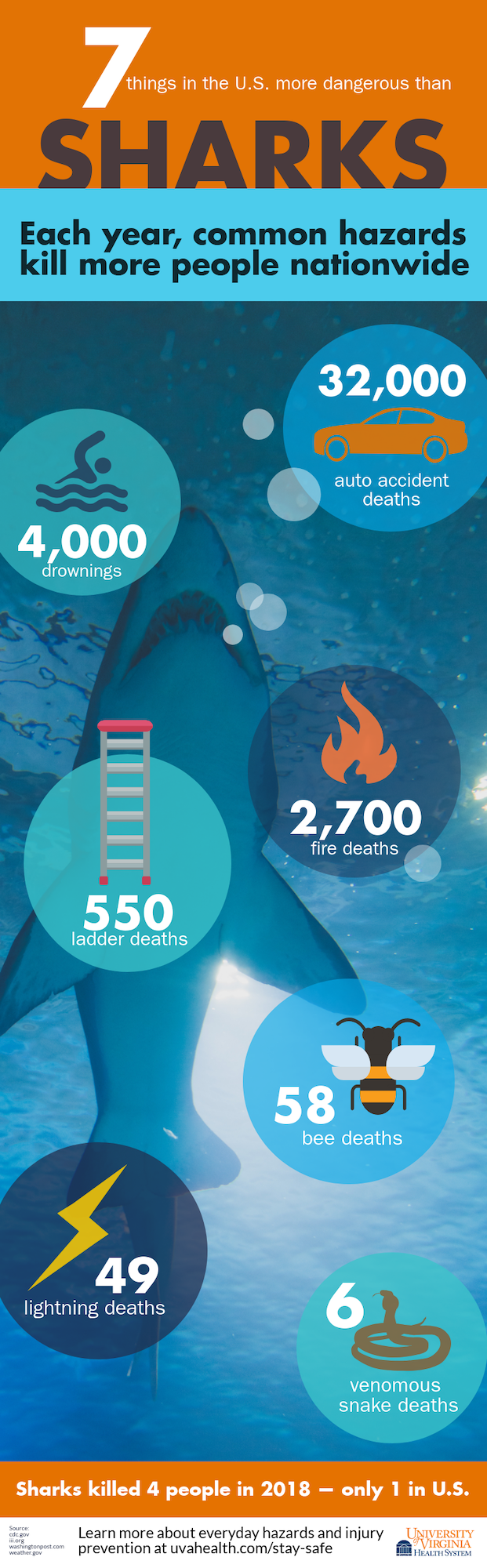 shark-infographic.png