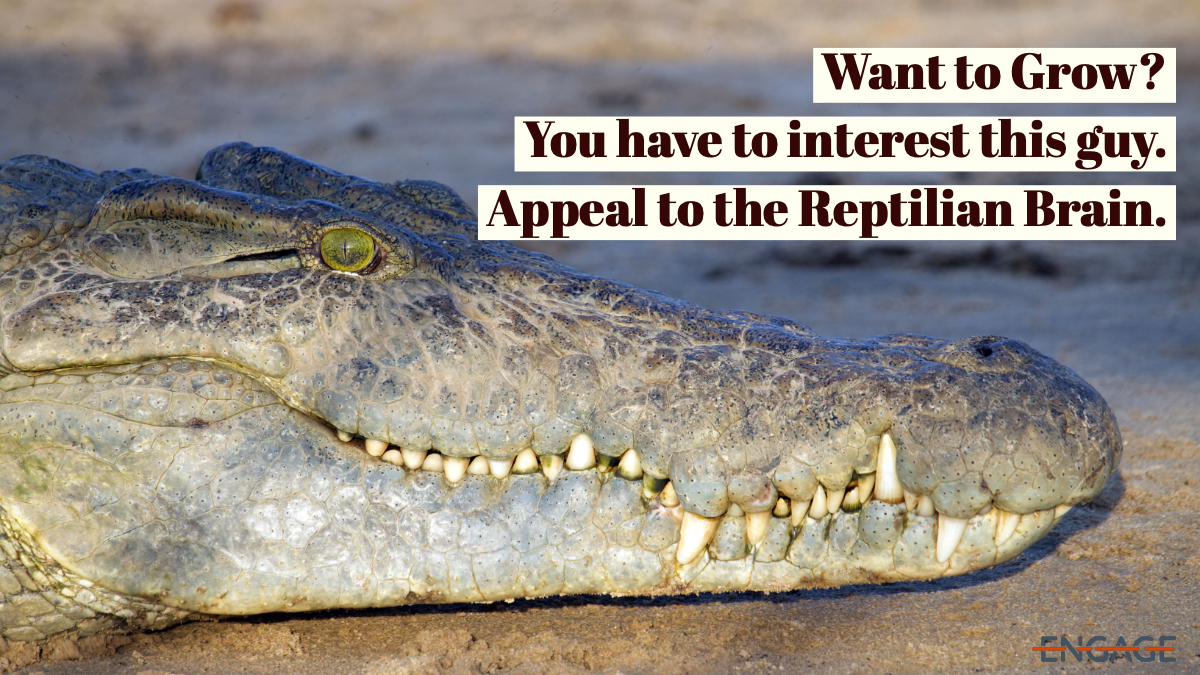 To grow, appeal to the reptilian brain.