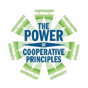 power_coop_principles.png