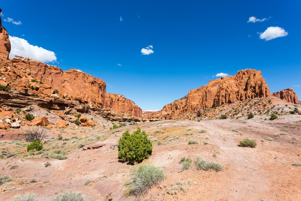 capital-reef-utah-desert-hiking-backpacking-camping (2).JPG