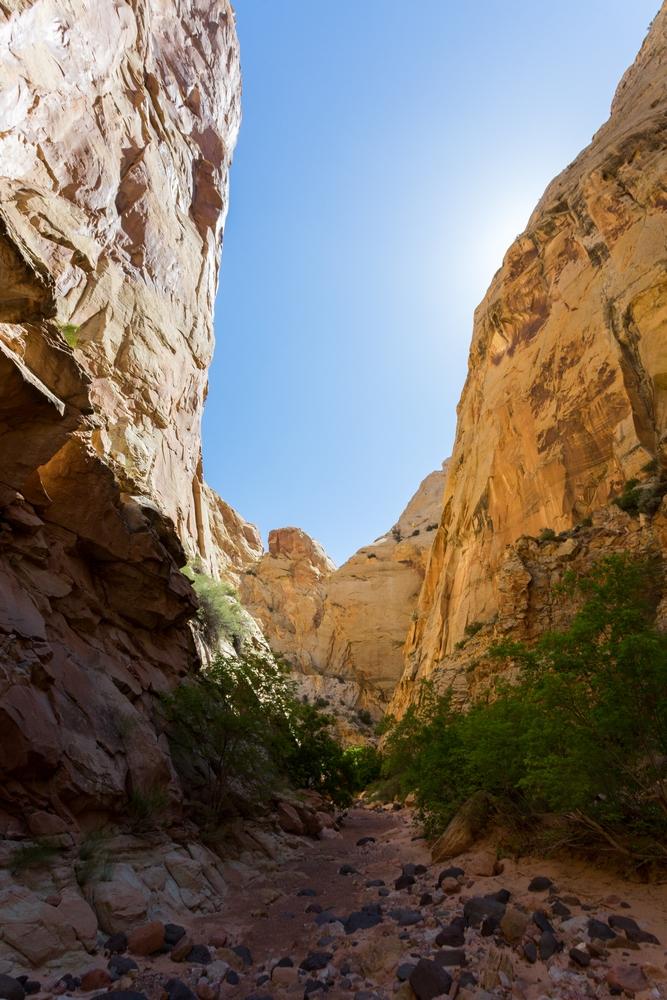 capital-reef-utah-desert-hiking-backpacking-camping (13).JPG