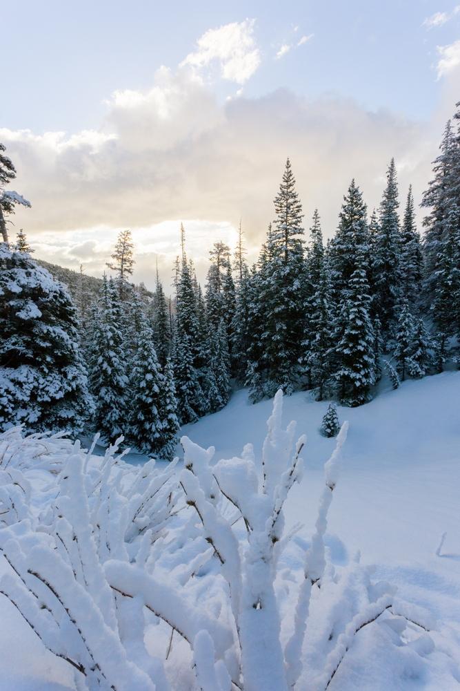 chasm-lake-spring-colorad-hiking-snow-sunrise (2).JPG