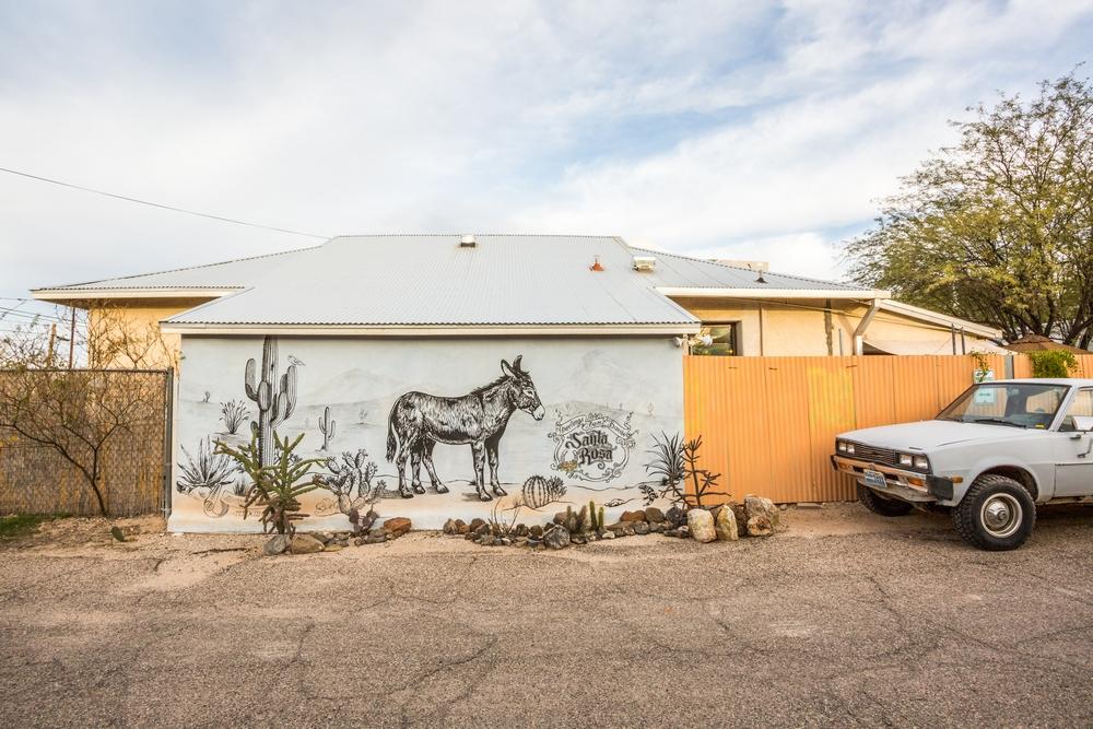barrios-tucson-arizona-desert (5).JPG