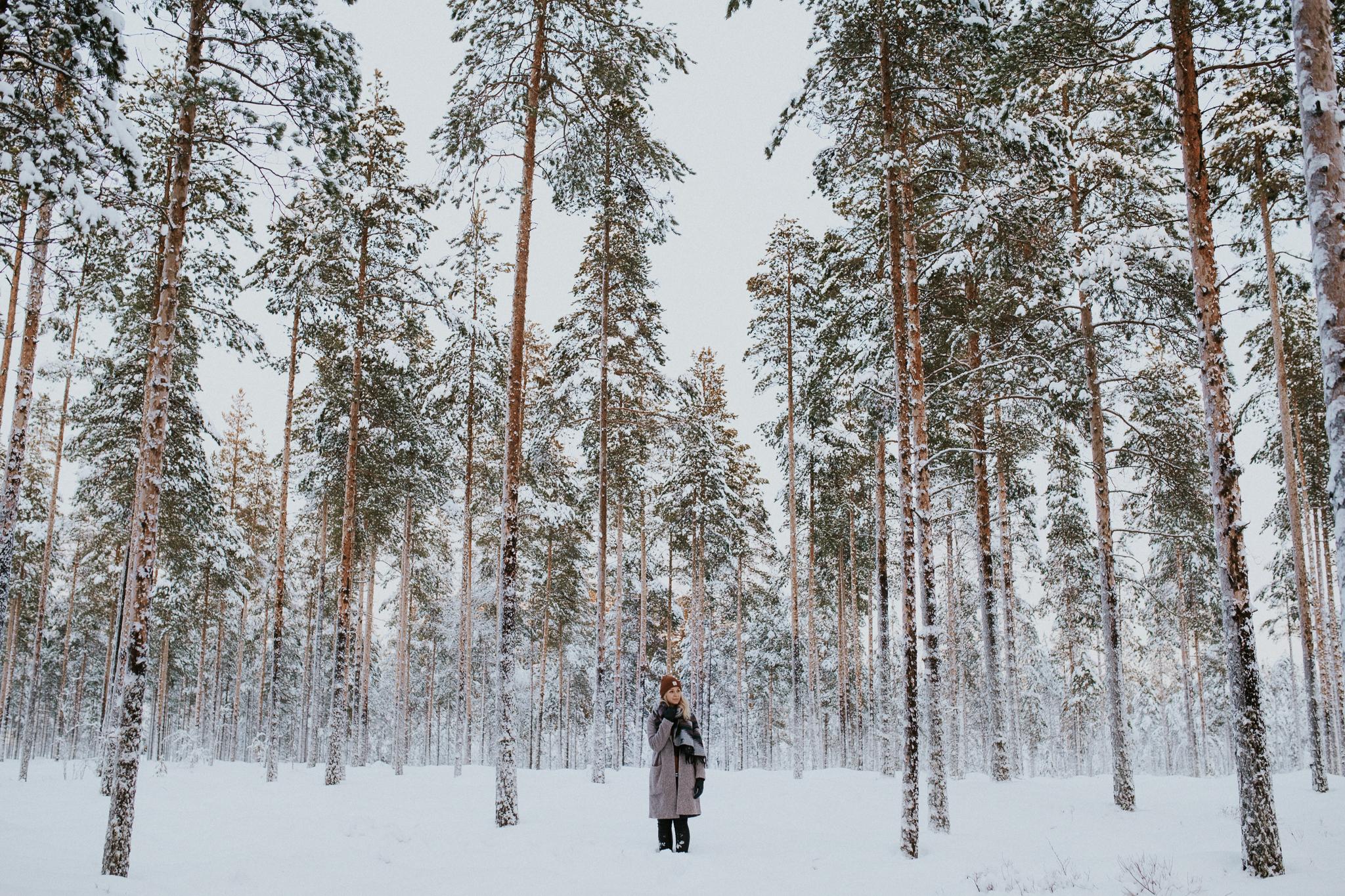 January Winter Photos-2.jpg
