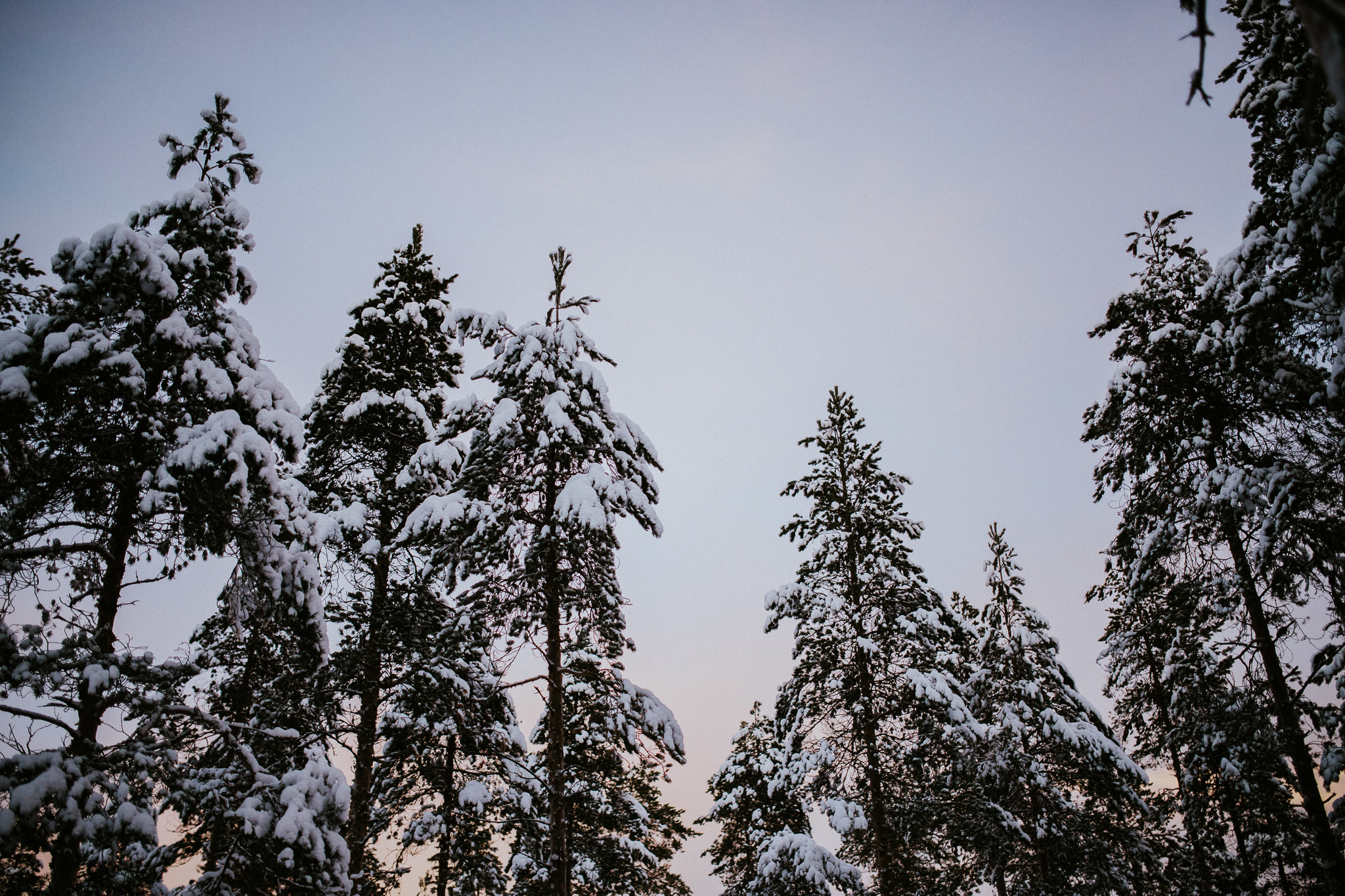January Winter Photos-13.jpg