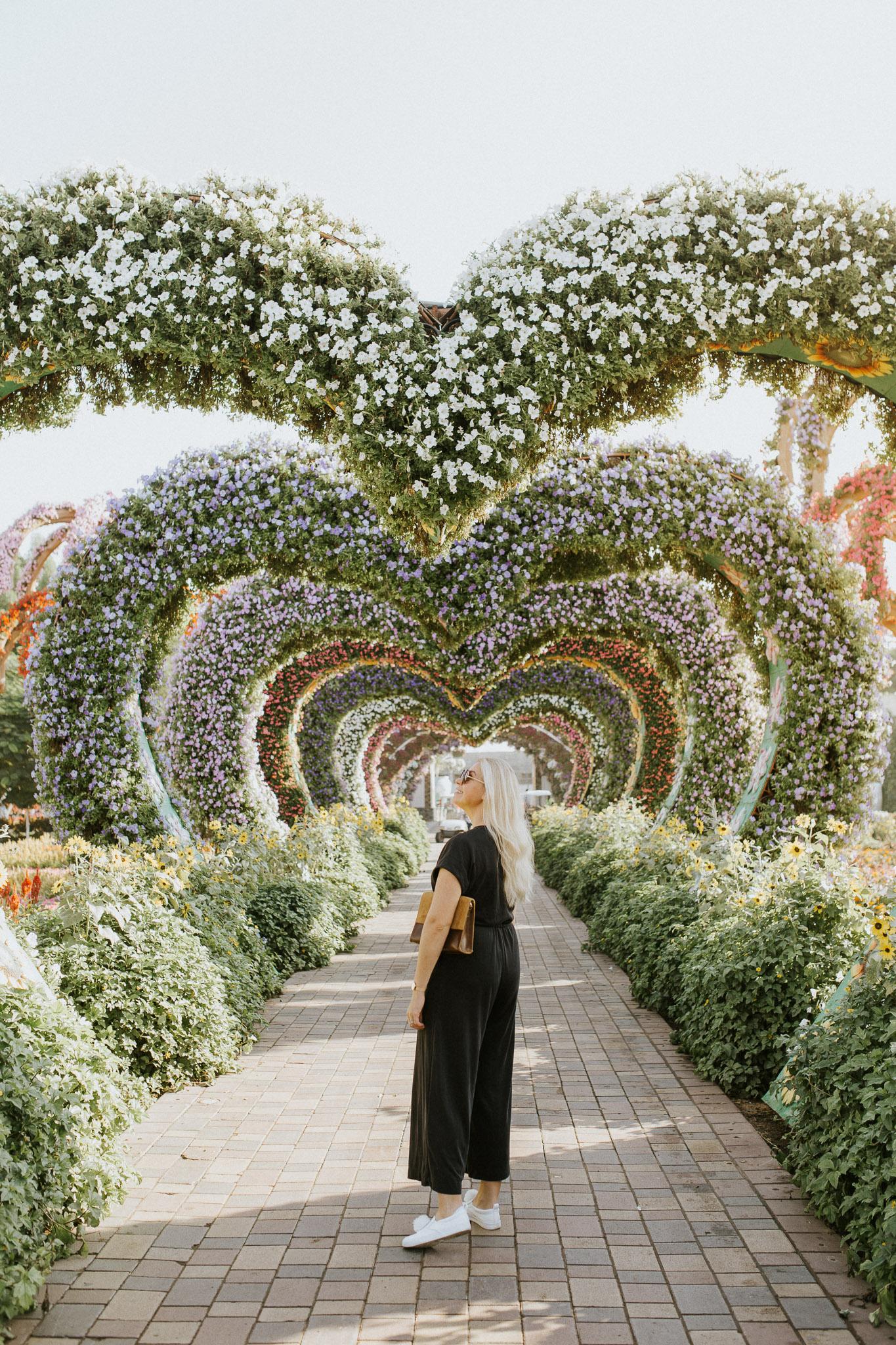 DUBAI miracle garden new-3.jpg