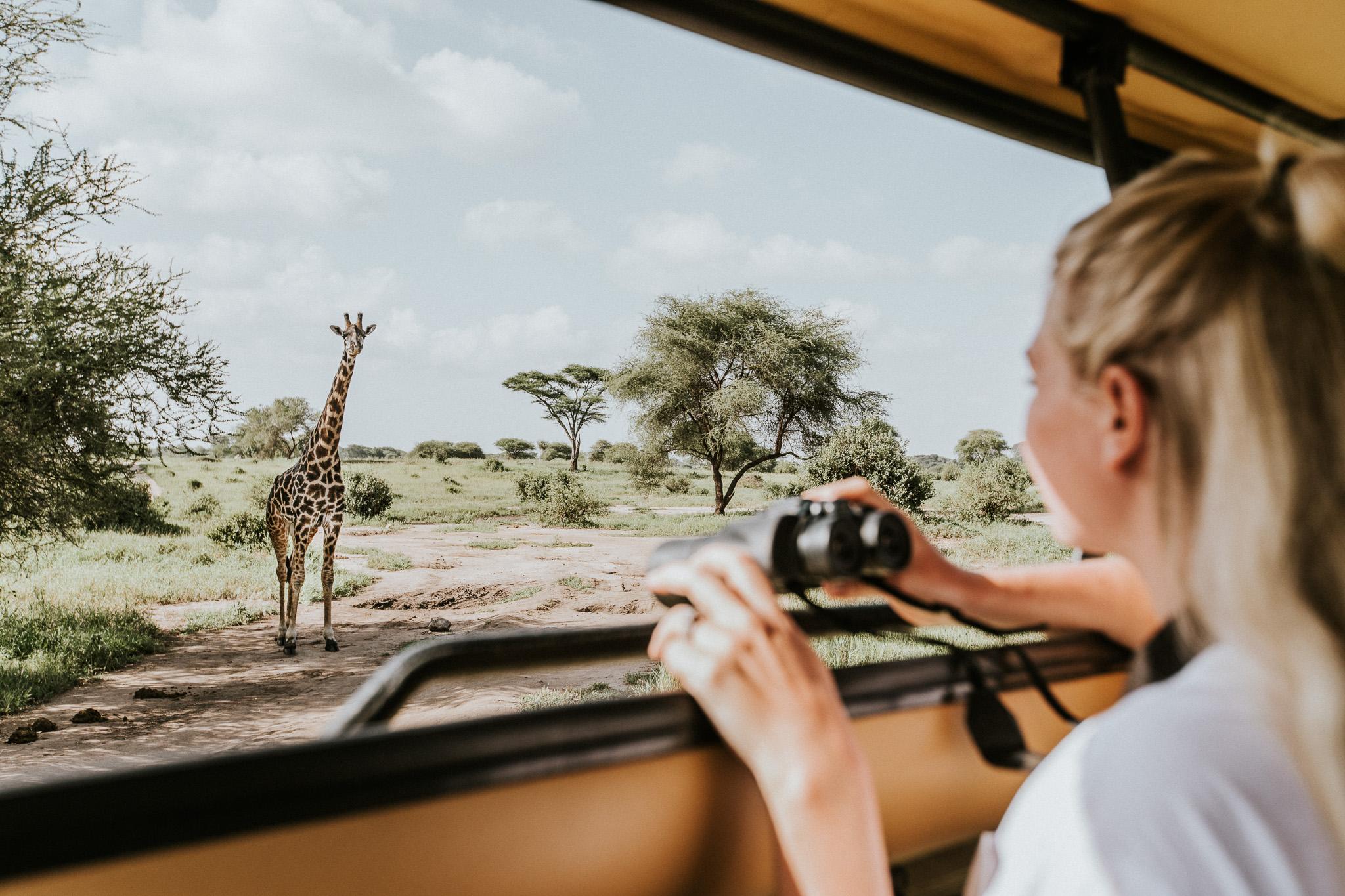 Safari-10.jpg