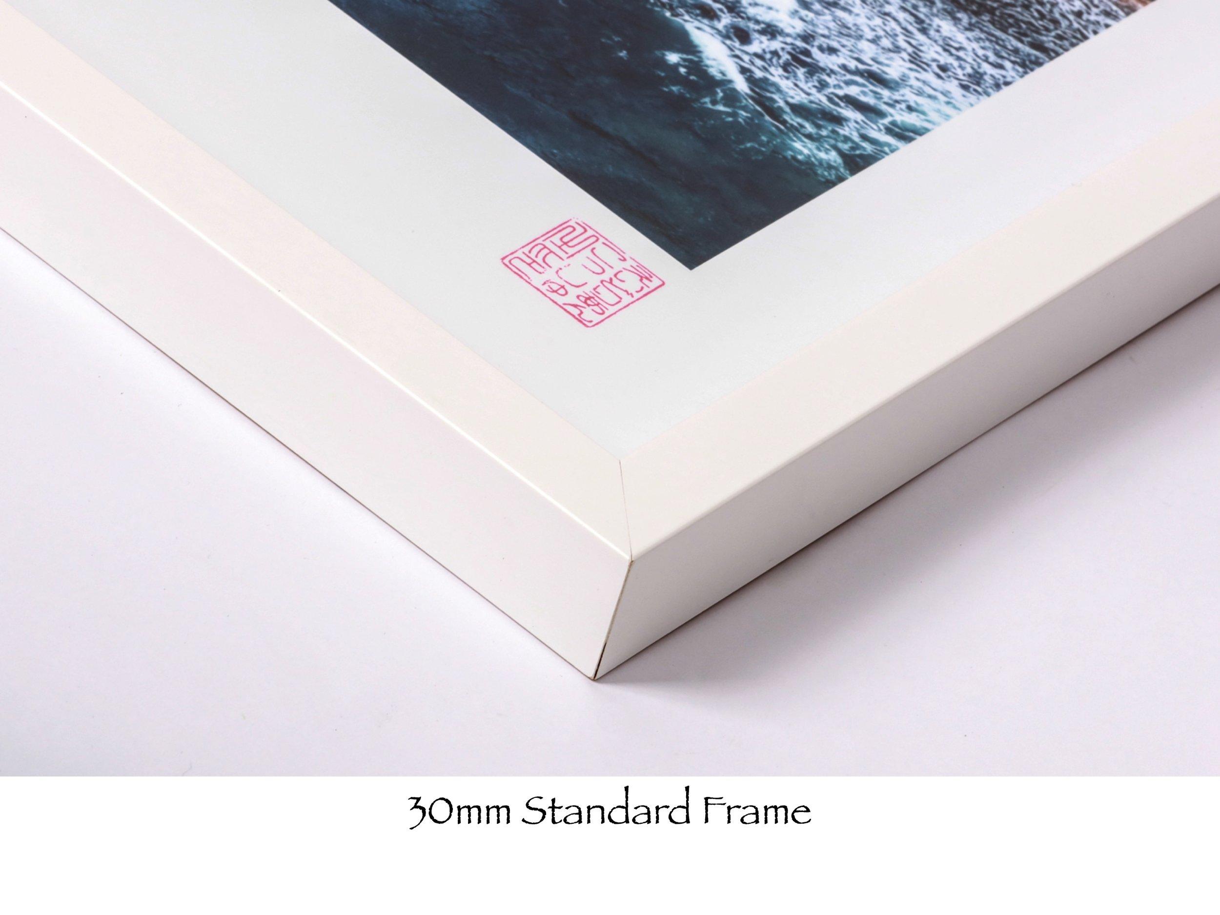 Standard Frame.jpg