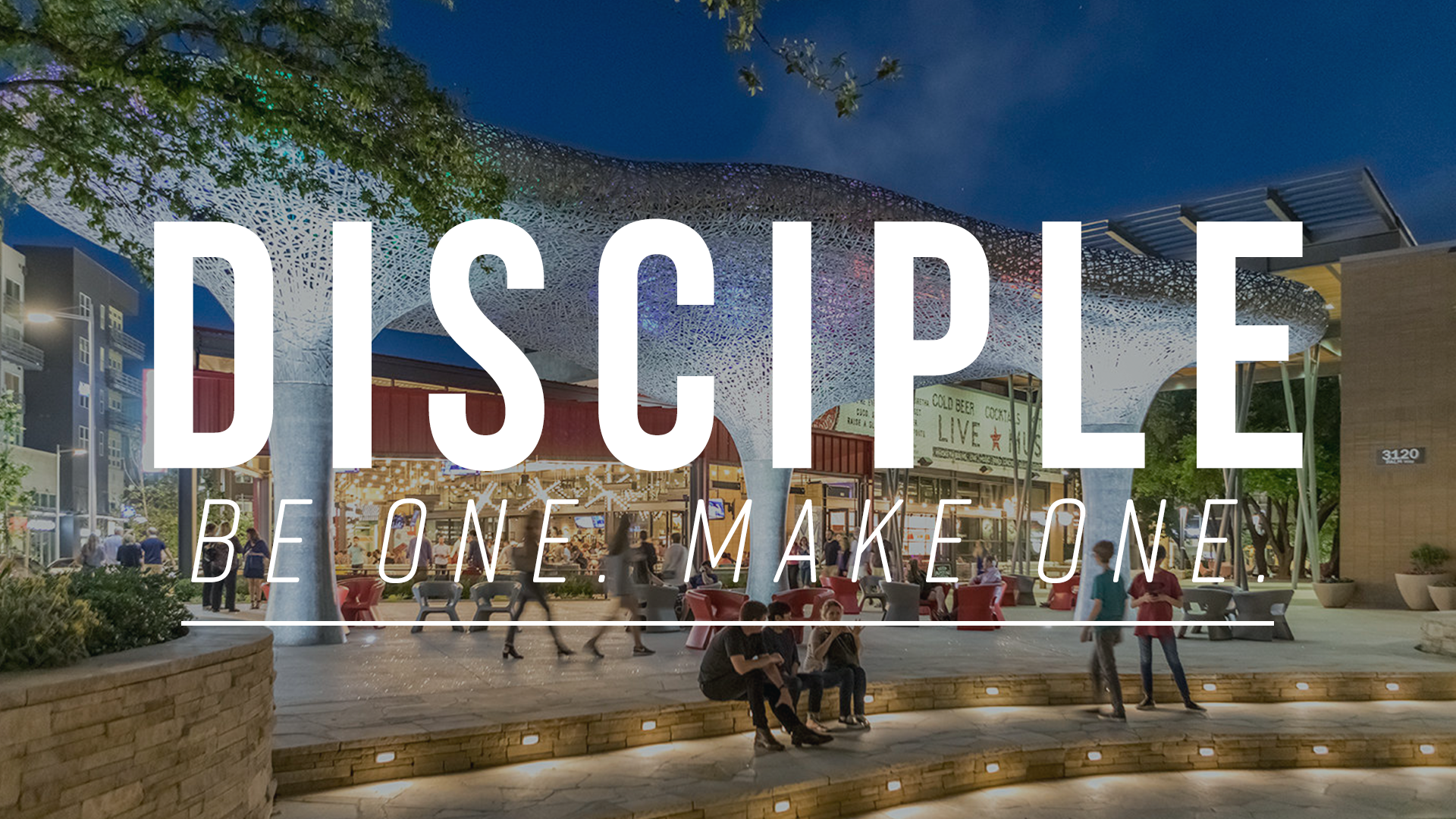 Disciple Series Graphic - Domain.png