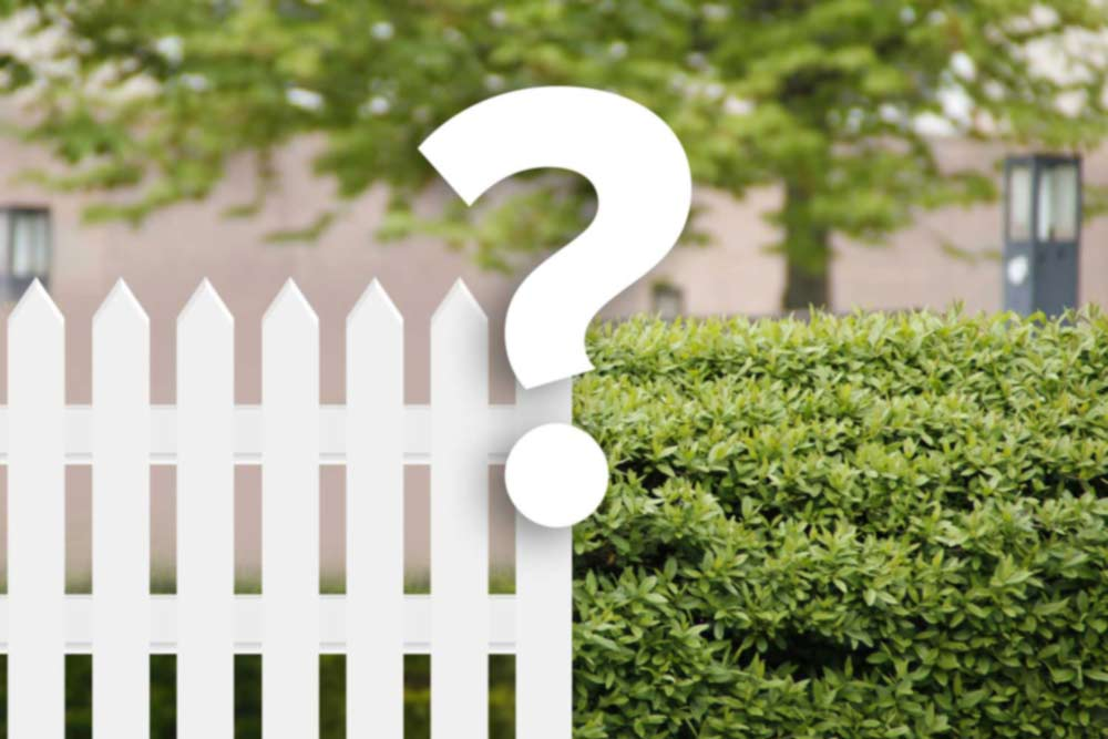 Is a hedge or fence better?